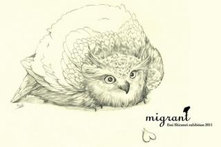 migrant2011-saso2.jpg